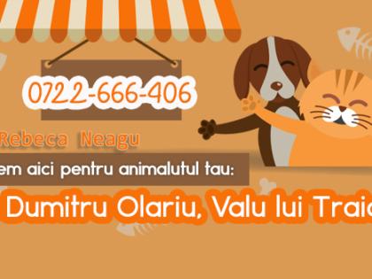 Cabinet veterinar Valu – locul care intruneste toate conditiile pentru o alegere perfecta